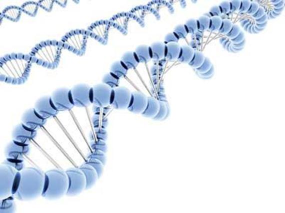 rekayasa genetika 1